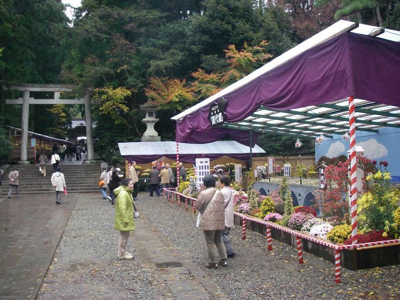 毎年テーマを変えて作られる「大風景花壇」ですが、今年は萬代橋(ばんだいばし)。新潟市街にある信濃川にかかる六連アーチの橋です。