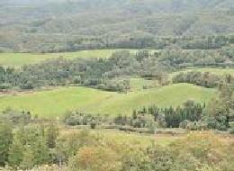 牧場の広さは約350ヘクタール(東京ドーム約75個分)