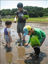 本物の田んぼでの田植えは、子どもにとっても貴重な体験