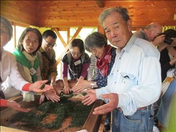 杵塚敏明さん(右)と一緒にお茶の手もみ体験