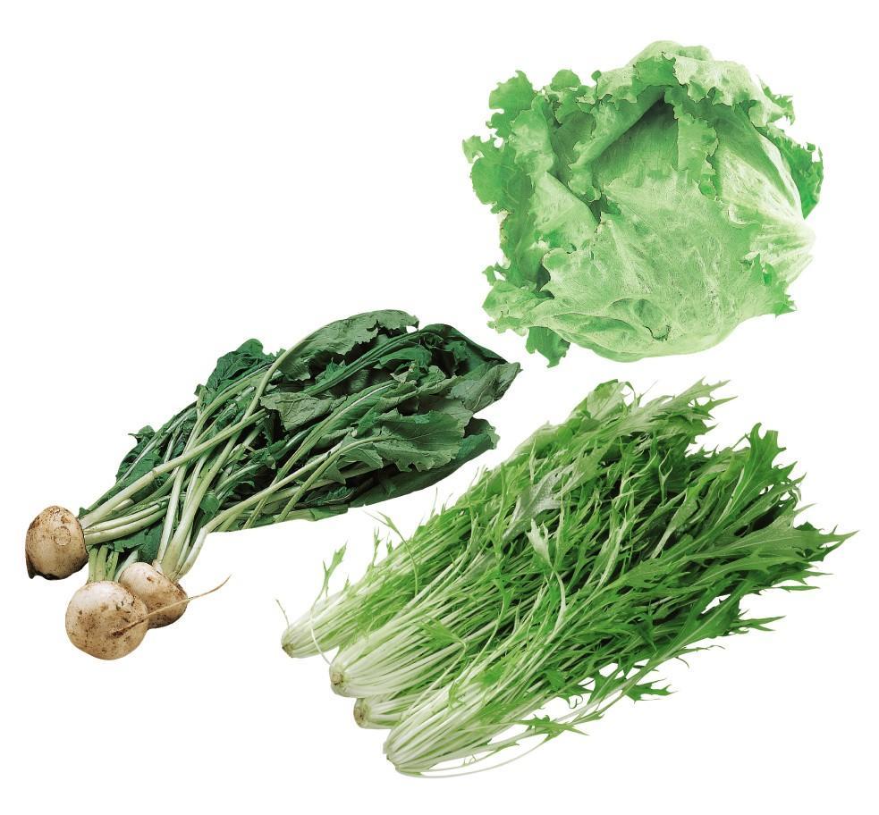 「登録 さんぶの『絆』みのり野菜セット 3種」