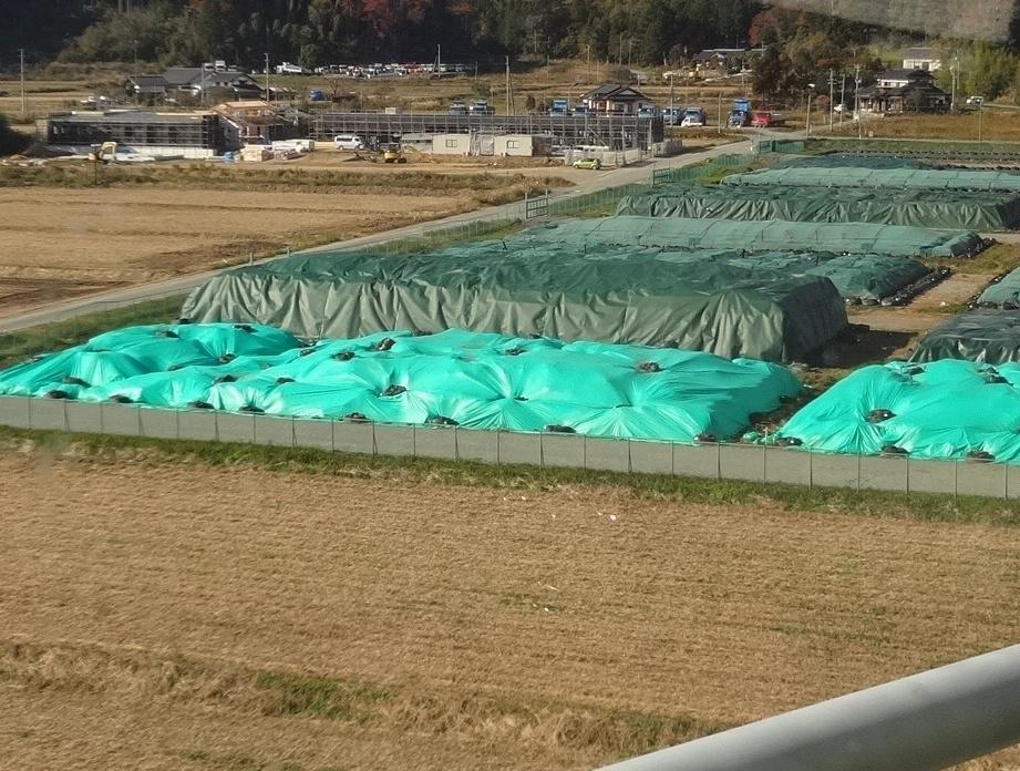 野積みされた汚染土