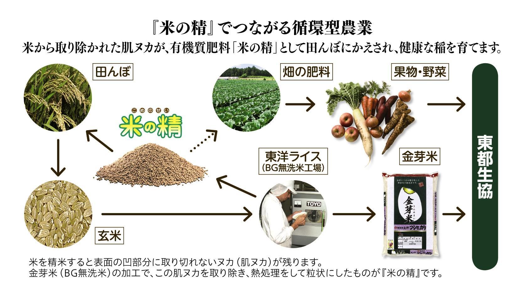 米の精・循環図
