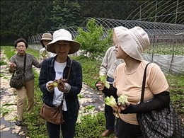 メンバー組合員が丁寧に生産者の畑と栽培管理などを確認